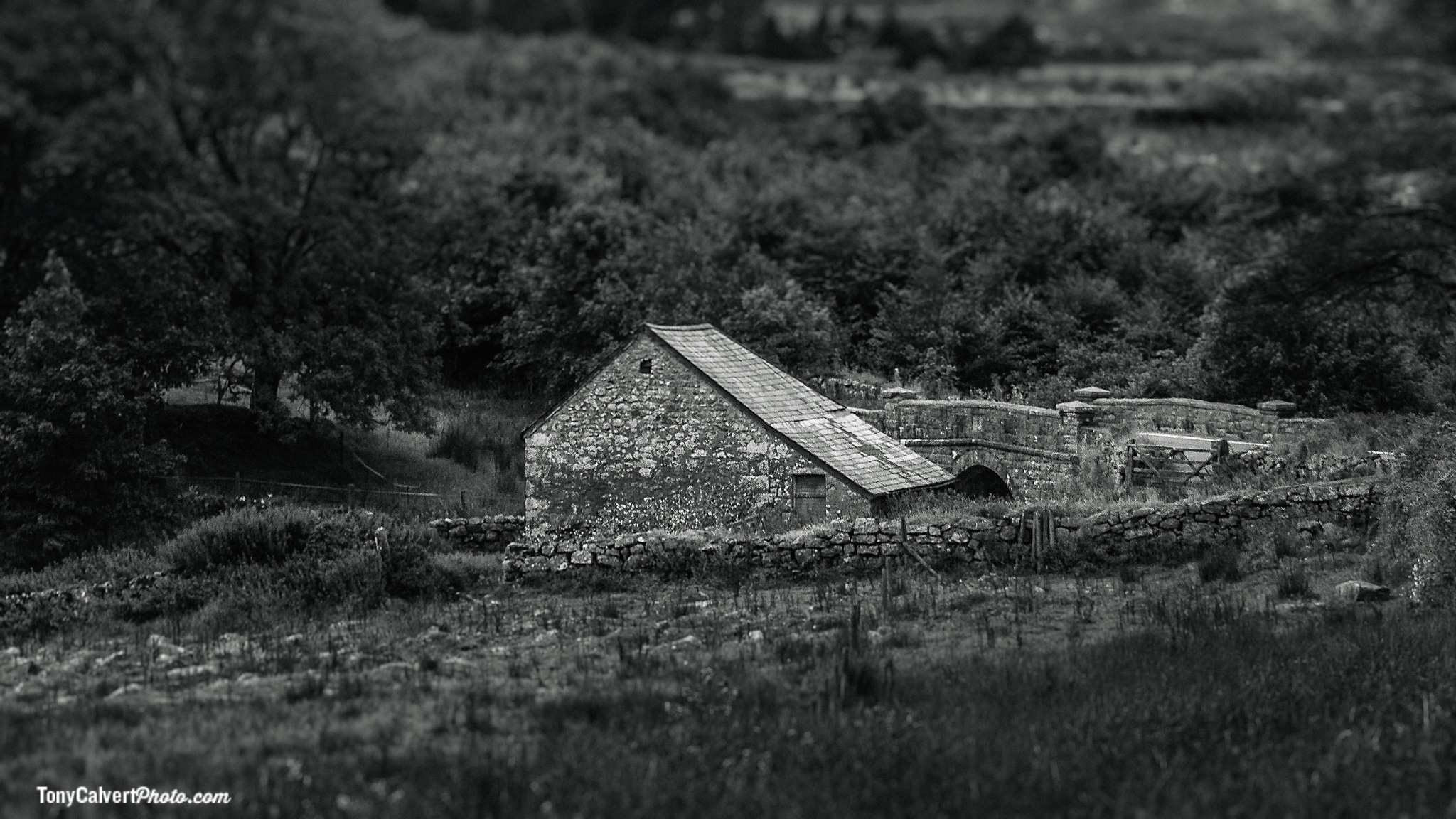 Dartmoor Barn and Bridge