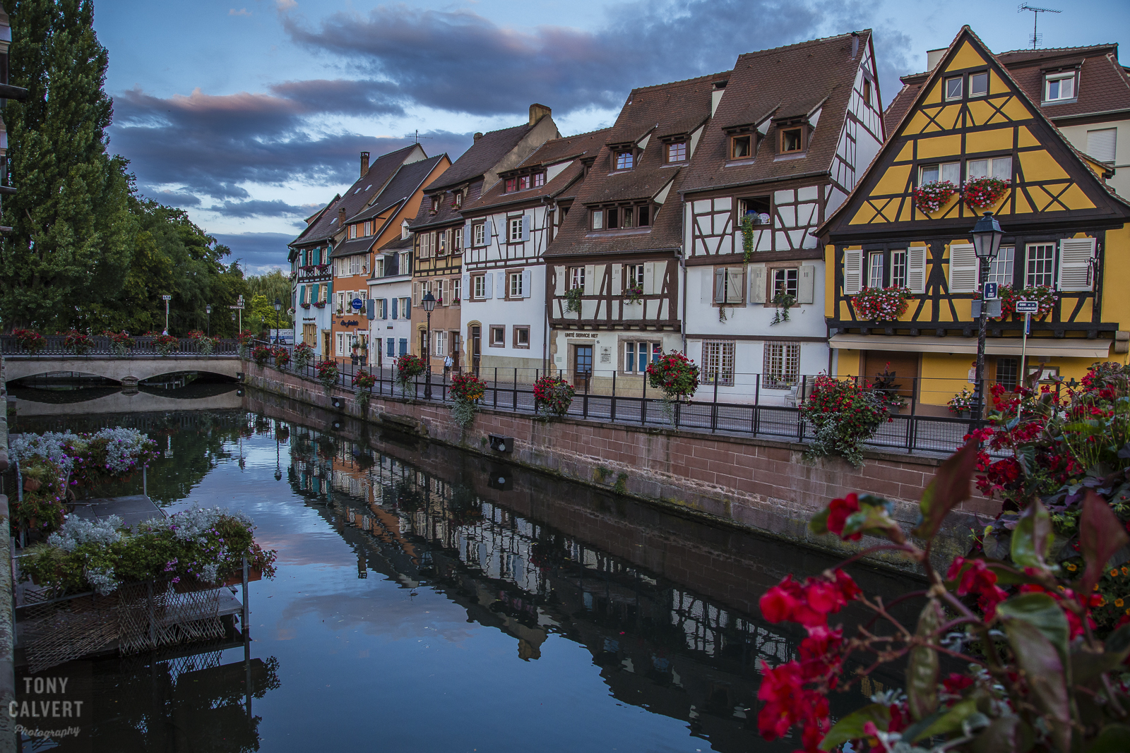 Alsace! France with a little bit of Germany mixed in