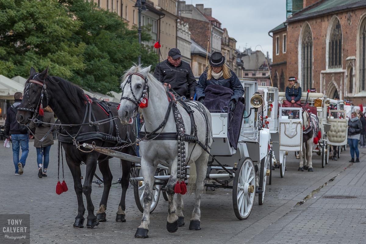 Krakow Carriages
